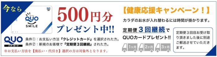 マツキヨ シリカ水 のむシリカ QUOカード クレジットカード