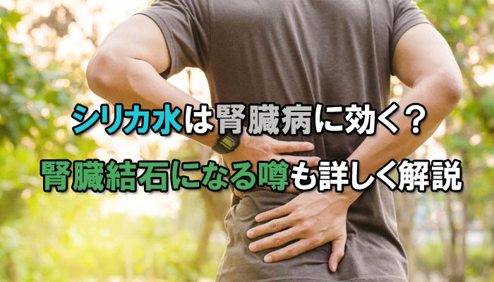 シリカ水 飲むシリカ 腎臓病 腎臓結石